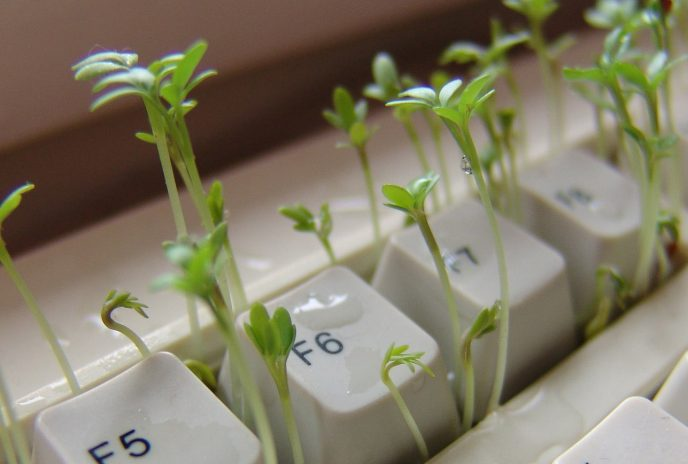 Grüne Startups